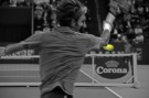Federer_dynamisch_1_sw