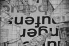 aarau_rollin_rock_2012_3_sw_logo